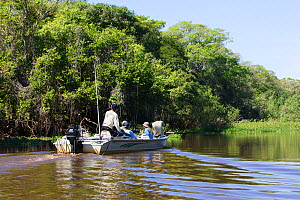 Tourists in boat scouting for wildlife, Pantanal, Brazil, model released  -  Piper Mackay
