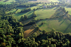 Aerial view of Holly Farm in the Sussex Weald, UK  -  Stephen Dalton