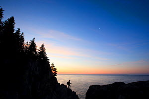 Lone hiker at sunrise on the Bold Coast trail in Cutler, Maine, USA, June 2009. Model released - Jerry Monkman