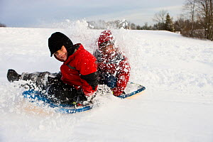 Young boys sledding at Wagon Hill Farm in Durham, New Hampshire, USA, January 2009. Model released.  -  Jerry Monkman