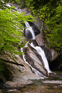 Hamilton Falls along Cobb Brook, a West River tributary in Jamaica State Park. Green Mountains, Vermont, USA.  -  Jerry Monkman