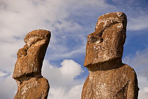 Close up of two stone sculptures / Moai at Ahu Ahivi/Ahu Akivi , Easter Island, South PacificMoai  October 2009  -  Doug Allan