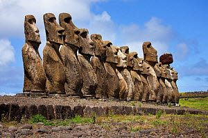 Stone figurative sculptures / Moai at Tongariki, Easter Island, South Pacific, October 2009  -  Sue Flood