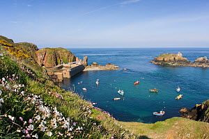 Boats moored in the natural harbour of Les Laches,  Sark, Channel Isles, UK, Summer 2009 - Sue Daly