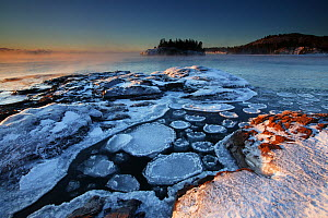Oval frost covered ice rafts floating in water beside ice covered shoreline, Lake Superior, Split Rock Lighthouse State Park, Minnesota, December 2008  -  Thomas Lazar