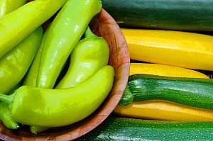 Close up of harvested home grown Chillies (Capscium annum acuminatum) and courgettes, UK, August - Gary K. Smith