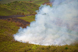 Aerial view of fire burning rainforest to clear land for agricultural use, near Andasibe Mantadia National Park, Madagascar. November 2008  -  Inaki Relanzon