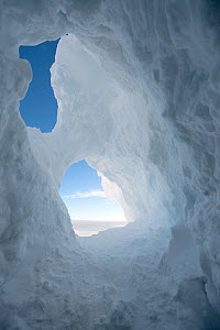 Looking out from a frozen ice cave, McMurdo Sound, Ross Sea, Antarctica, November 2008  -  Neil Lucas