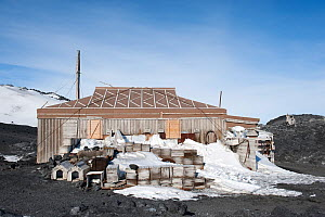 Wooden packing cases and dog kennels outside Shackleton's Nimrod Hut, frozen in time from the British Antarctic Expedition 1907, Cape Royds, McMurdo Sound, Antarctica, November 2008  -  Neil Lucas