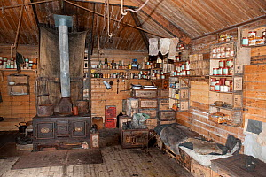 Interior of Shackleton's Nimrod Hut, frozen in time from the British Antarctic Expedition 1907, Cape Royds, McMurdo Sound, Antarctica, November 2008  -  Neil Lucas