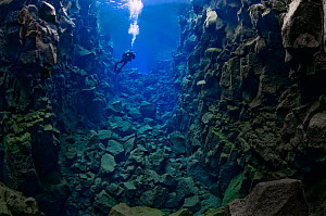 Diver in the tectonic boundary between the Eurasian and the North American plates, Silfra, Thingvellir lake, Thingvellir National Park, Iceland, May 2009.  -  Wild Wonders of Europe / Lundgre