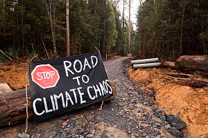 """Conservationists protest  sign """"Stop Road to Climate Chaos"""" against the felling of old growth trees in Tasmania's pristine Florentine, southwest Tasmania, Australia March 2007  -  Steven David Miller"""