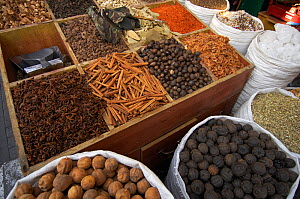 Fruit and spices for sale at the food market, Dubai, United Arab Emirates, February 2007  -  Staffan Widstrand