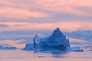 Sunset in a small fjord within Scoresby Sund, dotted with icebergs and bordered by fog-shrouded mountains covered with snow. Hurry Inlet, Scoresby Sund, East Greenland.  -  Jenny E. Ross