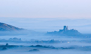 Corfe Castle and village and early morning mist. View from Kingston, Dorset, England, UK. April 2010. - Ross Hoddinott
