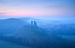 Corfe Castle, sunrise and early morning mist, view from West Hill, Corfe, Dorset, England, UK. April 2010. - Ross Hoddinott