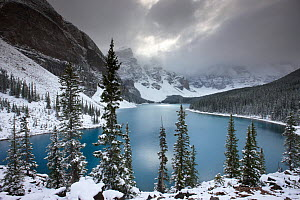 Morraine Lake, in the Valley of the Ten Peaks, after recent snowfall, Banff National Park, Alberta, Canada. October 2009  -  David Noton
