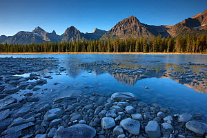The Athabasca River with Mt Fryatt and Brussels Peak at dawn, Jasper National Park, Alberta, Canada. September 2009 - David Noton
