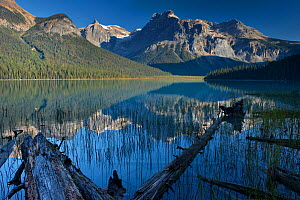 Emerald Lake with the peaks of the President Range beyond, Yoho National Park, British Columbia, Canada. September 2009 - David Noton