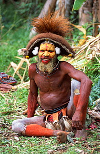 Huli man in traditional dress, Tari Valley, Papua New Guinea, during filming for BBC series Planet Earth.  -  Tom Clarke
