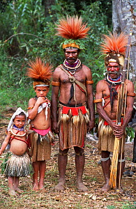 Huli wigmen and children in traditional clothing, feather headdress and weapons. Tari Valley, Papua New Guinea, during filming of BBC series Planet Earth, August 2004.  -  Tom Clarke