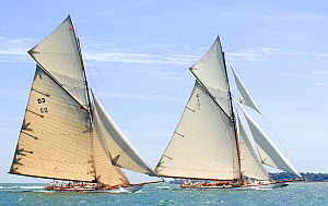 "Gaff cutters ""Tuiga"" and ""Mariquita"" at the Westward Cup Regatta, Cowes, Isle of Wight. July 2010.  -  Rick Tomlinson"