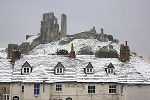 The Greyhound Pub in snow, with Corfe Castle behind, Dorset, England, UK. March 2009  -  Peter Lewis