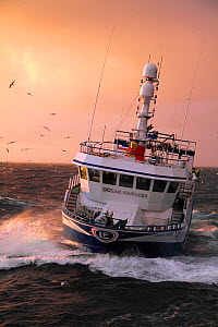 "Fishing vessel ""Ocean Harvest"" on the North Sea, May 2010. Property released.  -  Philip Stephen"