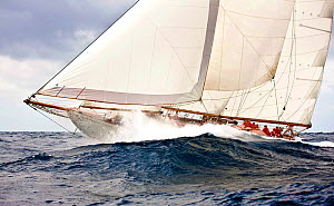 """Astor"" sailing at the Panerai Antigua Classic Yacht Regatta, Caribbean, April 2010. - Onne van der Wal"