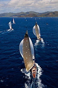 Yachts under spinnaker, racing at the Panerai Antigua Classic Yacht Regatta, Caribbean, April 2010.  -  Onne van der Wal