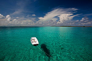 Tethered tender floating on clear waters in the Exumas, Bahamas, Caribbean. June 2009.  -  Onne van der Wal