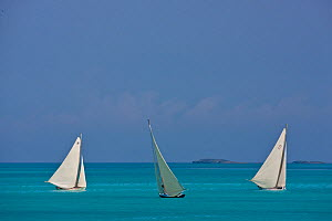 Three boats sailing on turquoise seas during the Bahamian Sloop regatta, Georgetown, Exumas, Bahamas. April 2009. - Onne van der Wal