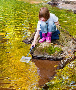 Young girl with fishing net, playing beside a small river, pond dipping, Angus, Scotland. Model released - Niall Benvie