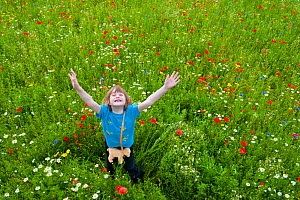 Young girl arms in air, waving / playing in a wildflower meadow, Scotland, UK, July 2009. Model released - Niall Benvie