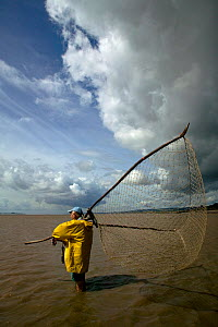 Traditional lave net fisherman (a method dating back at least 1,500 years) fishing for salmon. This Severn Estuary way of life is threatened by proposed barrage. Gloucestershire, England, July 2009, M... - David Woodfall