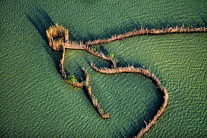Aerial view of traditional fishing fences for trapping fish, Kosi bay, South Africa  -  Richard Du Toit