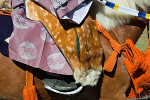 Details of saddle and costume of a traditionally dressed samurai (warrior) from the Takeda School of Horseback Archery, during a Yabusame (Japanese mounted archery), at Meiji Jingu Shrine, Tokyo, Toky... - Kristel Richard
