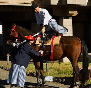 A samurai (warrior) from the Takeda School of Horseback Archery mounts his horse, during the training prior to a Yabusame (Japanese mounted archery), at Meiji Jingu Shrine, Tokyo, Tokyo Prefecture, Ja... - Kristel Richard