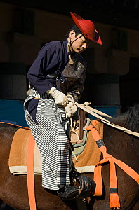 A samurai (warrior) from the Takeda School of Horseback Archery tightens his horse's girth, during the training prior to a Yabusame (Japanese mounted archery), at Meiji Jingu Shrine, Tokyo, Tokyo Pref... - Kristel Richard