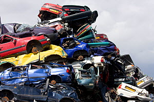 Pile of scrap cars prior to being recycled. England, UK July 2009 - David Woodfall