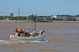 Sailing boat on the River Mersey, Liverpool, UK. July 2010. - Norma Brazendale