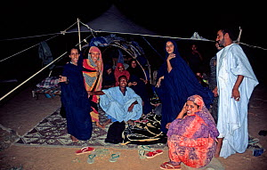 Group of Mauritanian nomads gathering in their tents in the evening, SW Mauritania, February 2004.  -  Tom Hugh-Jones