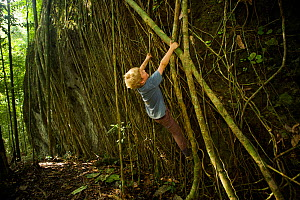 Young boy aged 7 (model released) playing / climbing on Strangler fig (Ficus destruens) roots growing, tropical rainforest, Borneo, Malaysia - Tim Laman