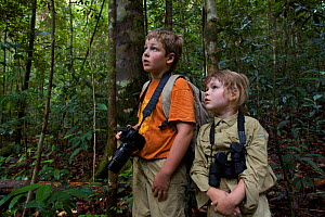 Two young children (brother and sister- model released) in tropical rainforest watching a wild orangutan. Borneo, July 2007  -  Tim Laman