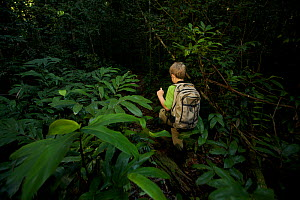 A young boy (model released) aged 9, hiking in the rainforest in Borneo. July 2007  -  Tim Laman