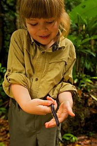 Young girl (model released) holding Giant millipede, tropical rainforest, Borneo, July 2007 - Tim Laman