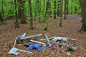 Illegal fly-tipping in Beech (Fagus) woodland in spring. Surrey, England, UK - Adrian Davies