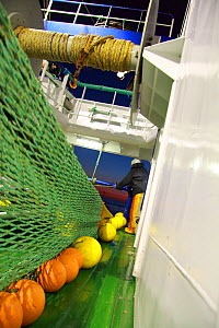 Paying out the trawl net over the stern of a North Sea trawler, June 2010.  -  Philip Stephen