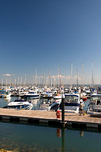 Boats moored in Portland Marina, venue for 2012 Olympic sailing events. Dorset, England, 2010.  -  Rob Cousins