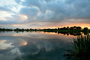 Freshwater lake formed after commercial peat extraction finished in the 1960's. Now a venue for carp fishing but also an important wetland habitat within the Somerset Levels. Near Westhay, Somerset, E...  -  John Waters